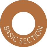 BASIC SECTION